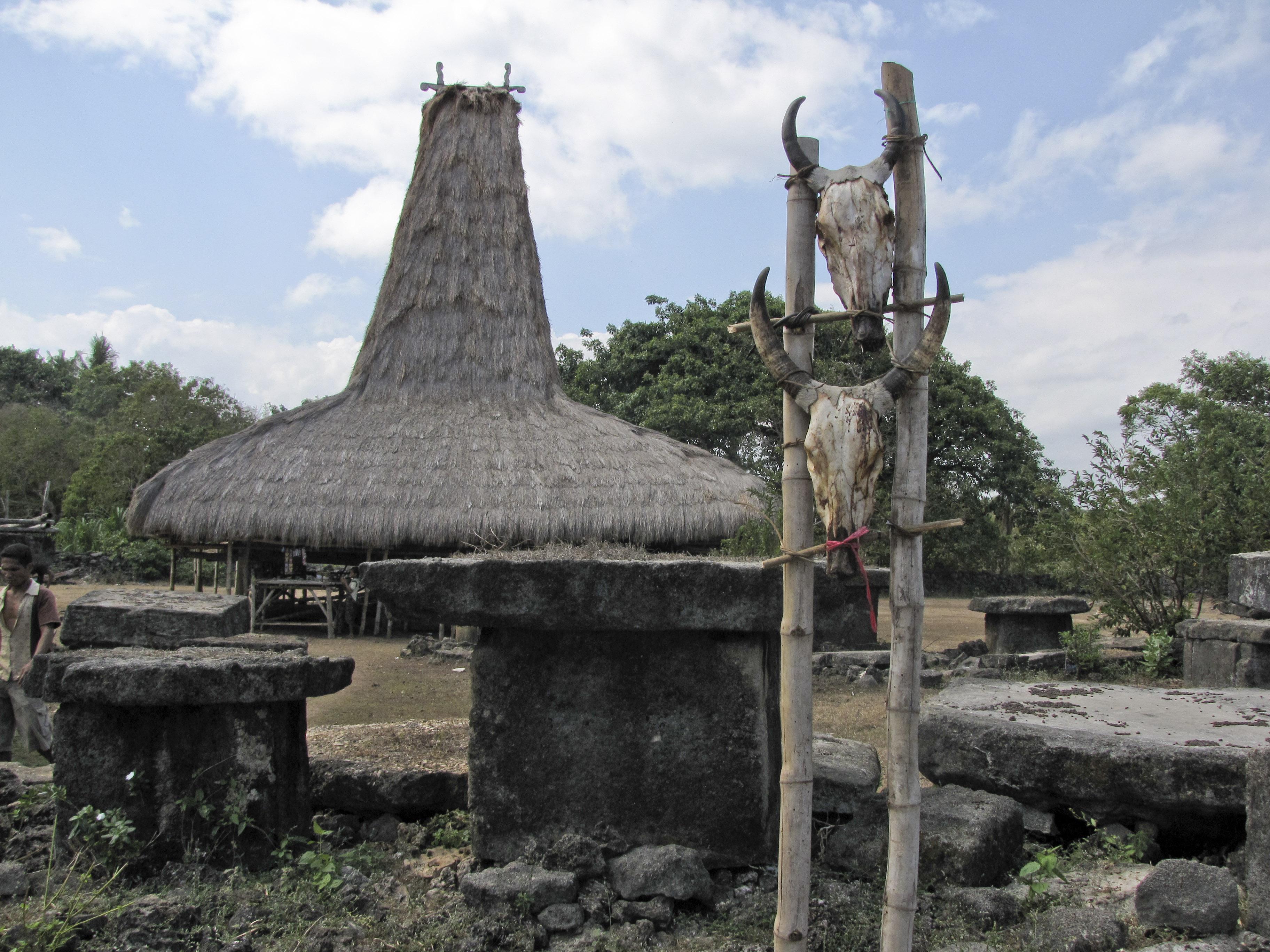 Rumah adat Sumba   Google Image/Wikipedia