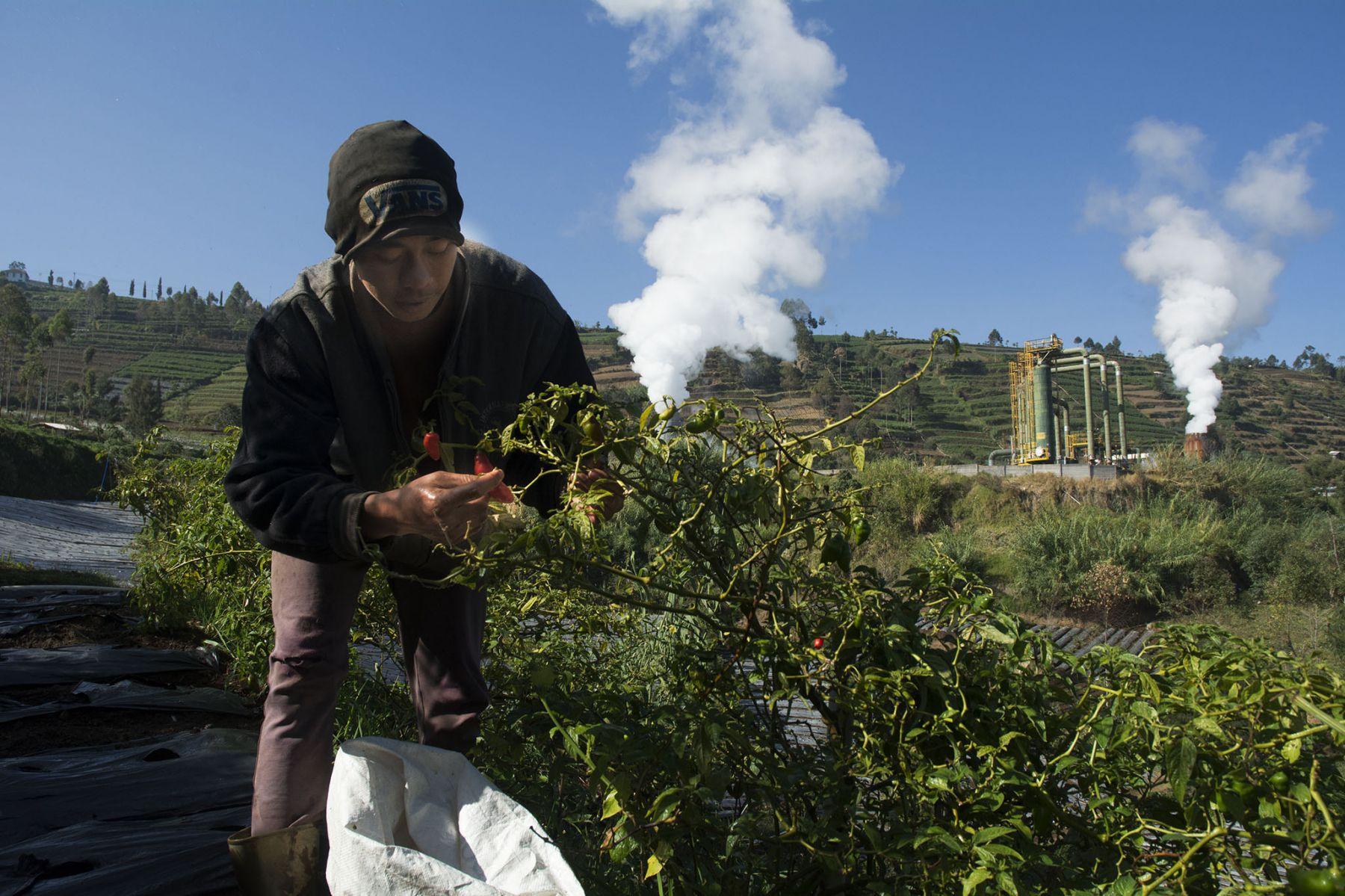 Proyek Pembangkit Listrik Tenaga Panas Bumi (PLTP) di Baturraden, Gunung Slamet
