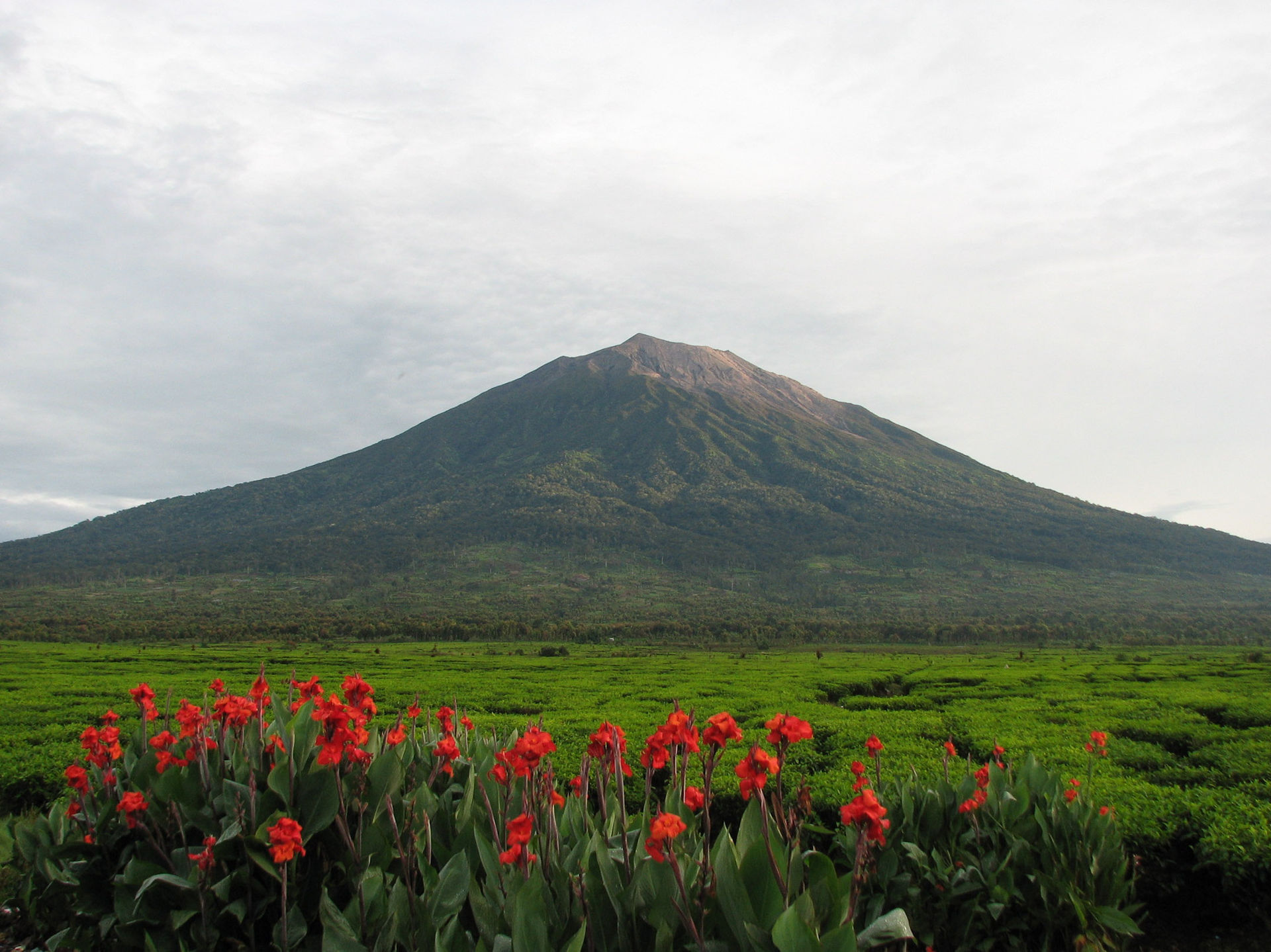 Gunung Kerinci   By Uprising - Own work, CC BY-SA 3.0, https://commons.wikimedia.org/w/index.php?curid=26995055