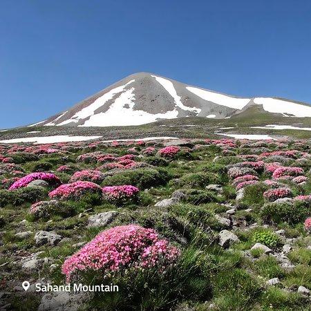 Gunung Sahand   Tripadvisor.com