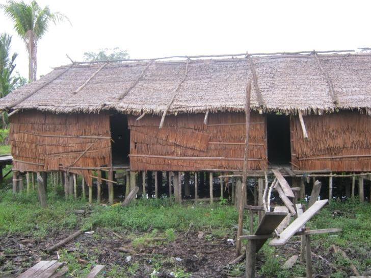 Rumah Jew di distrik Tomor, Kabupaten Asmat.