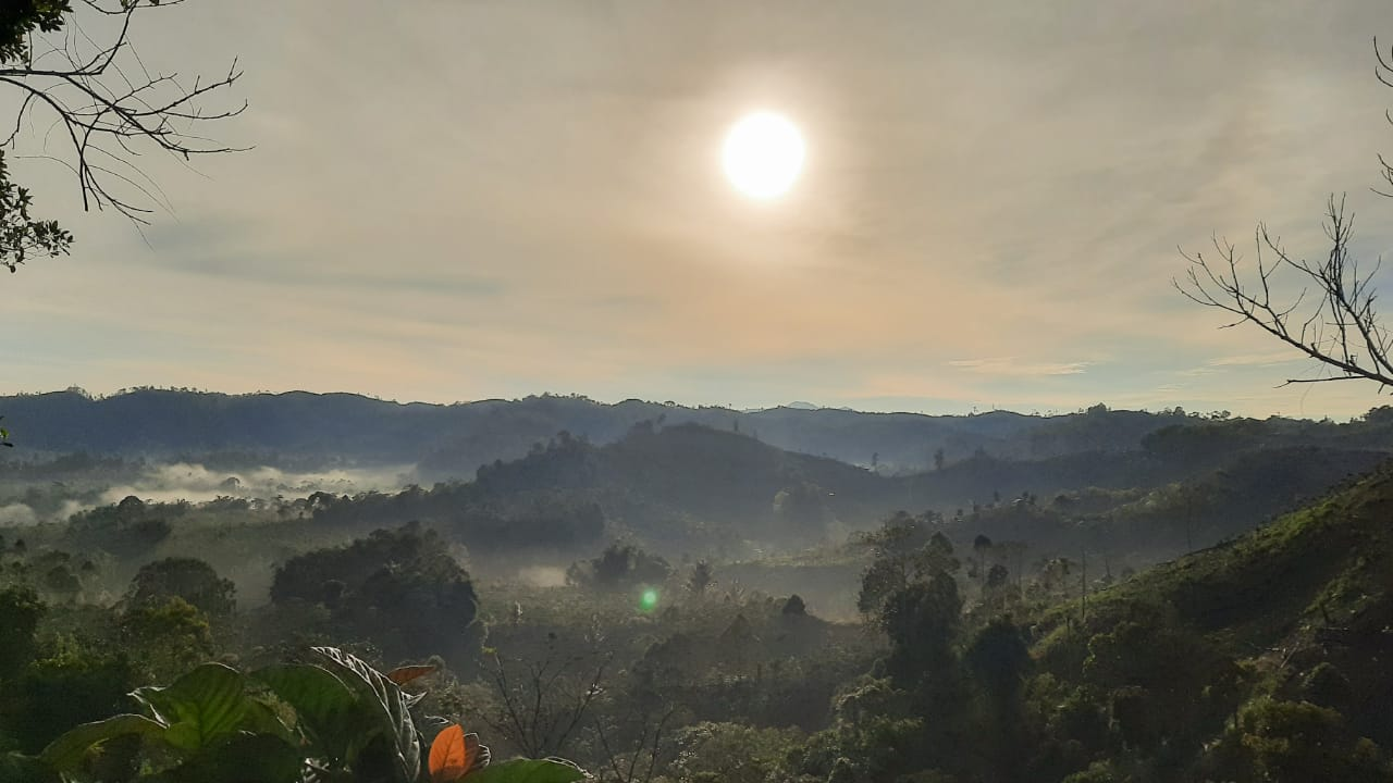 Taman Nasional Bukit Barisan, salah satu kekayaan alam berharga yang dimiliki Pulau Sumatra.