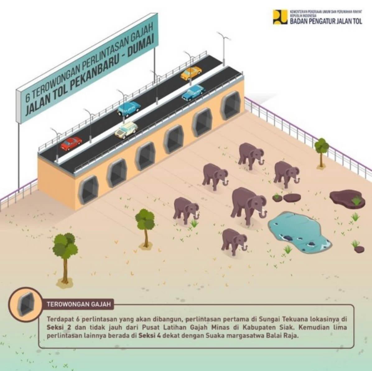 Jalan Tol Gajah