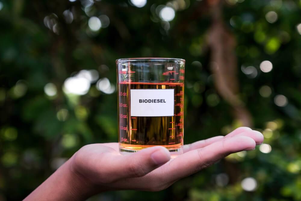 Biodiesel © Shutterstock