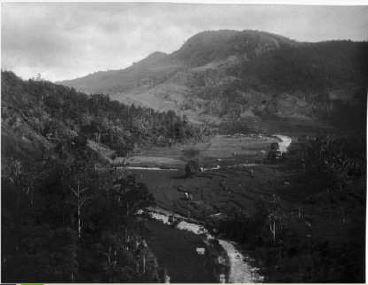Potret dahulu Kota Sawahlunto di tengah-tengah hutan belantara.Sumber: Tangkapan layar lembar Webinar Balai Diklat Tambang Bawah Tanah(08/05/2020)
