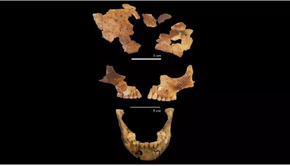 Tengkorak anak kecil yang ditemukan di Gua Makpan.