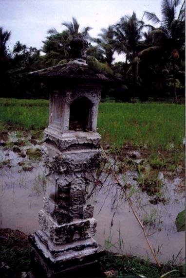 Tempat pemujaan Dewi Sri bisa ditemui di daerah persawahan Bali.