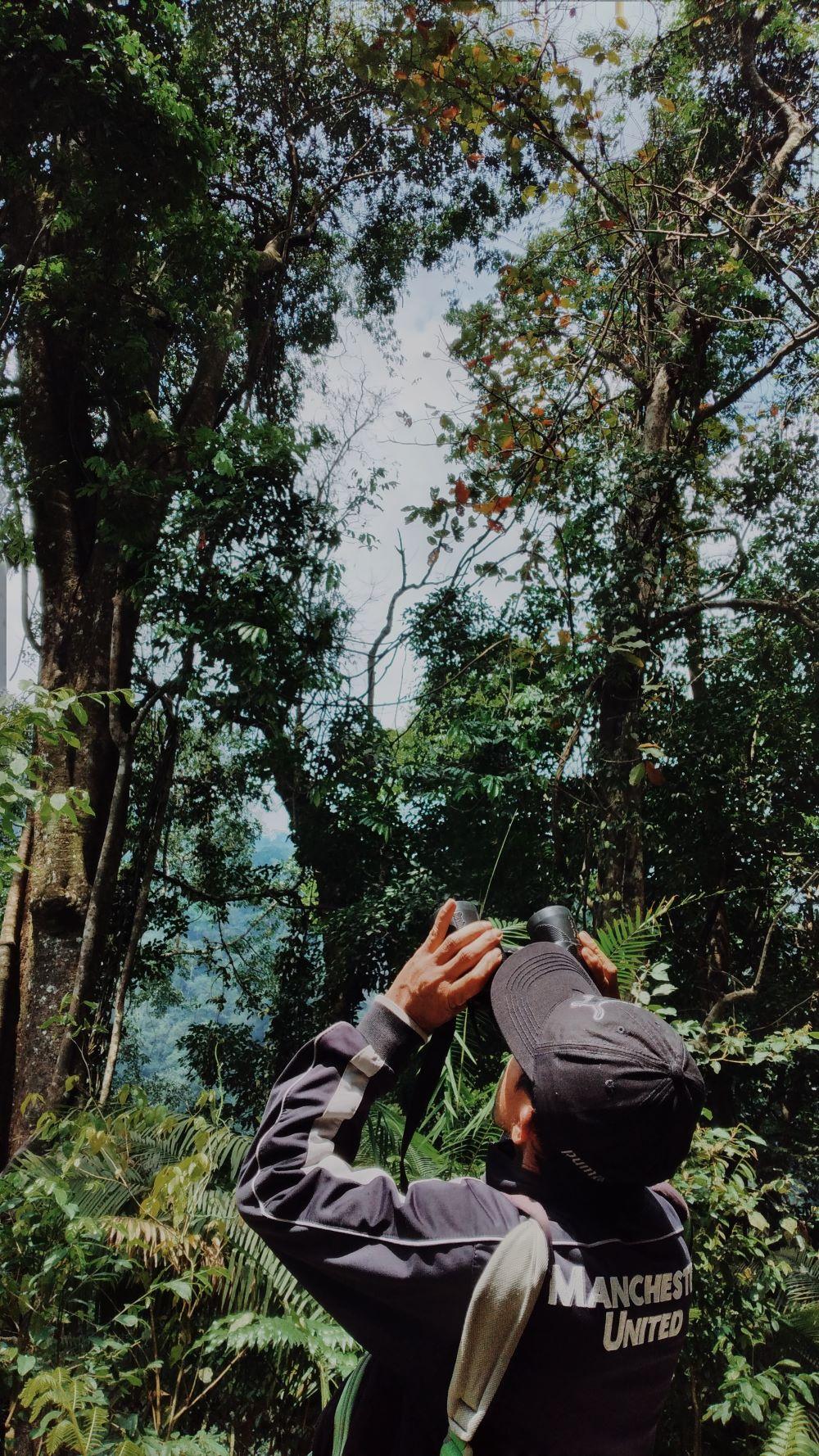 Aktivitas Primatewatching | Foto: Yeni Rachmawati