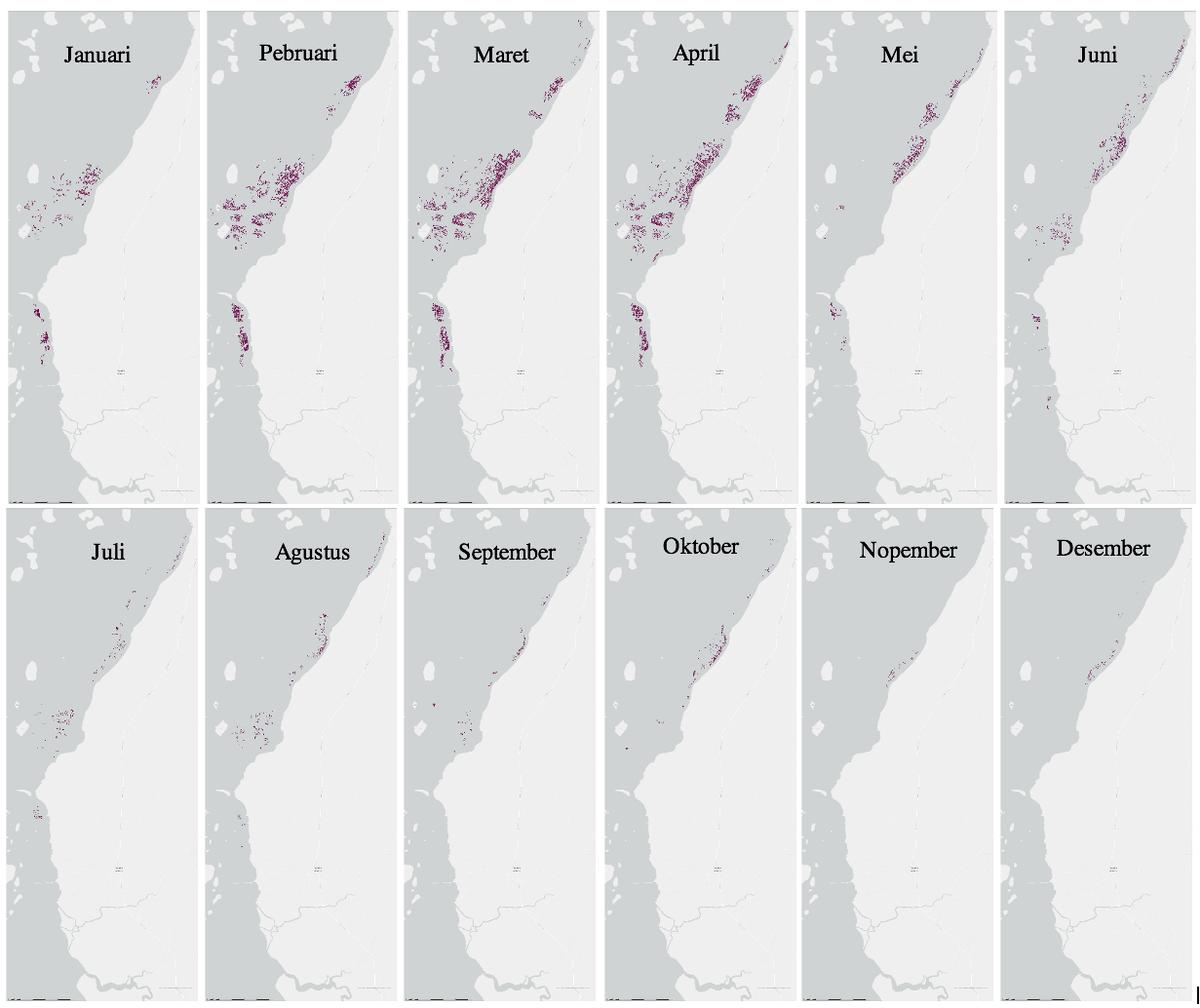 Area budi daya rumput laut di sepanjang garis pantai daratan Pangkep, Sulawesi Selatan pada setiap bulan tahun 2018. | The Conversation