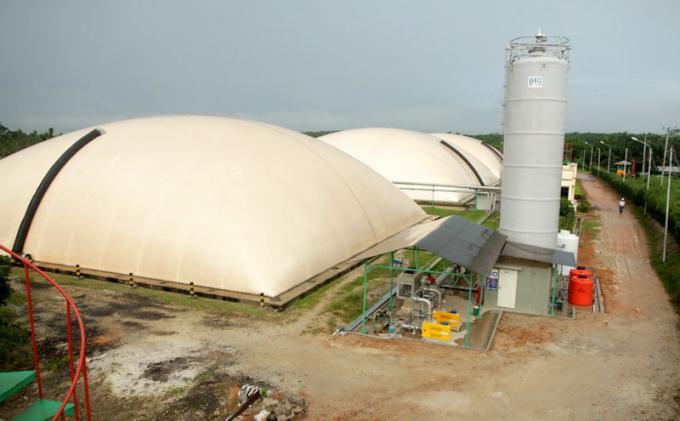 Pembangkit Listrik Tenaga Biogas (PLTBG)   Sumber: Tribunnews.com/Rusmiadi