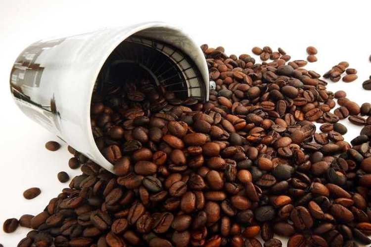 Kopi bajawa | Foto: Cafebrick.co