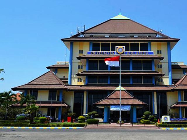 Universitas Airlangga   Foto: Unsplash