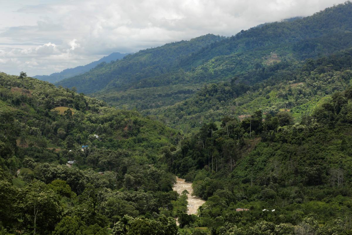Penampakan Taman Nasional Gunung Leuser   Galeri Imaji Pertiwi