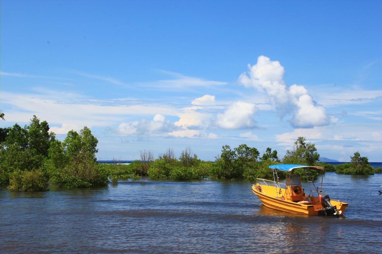 Pemandangan ekowisata Desa Bahoi | Shutterstock/itrand katuuk