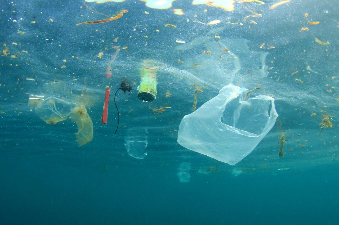 Sampah plastik yang berakhir di lautan.   Foto : ShutterStock/ Rich Carey