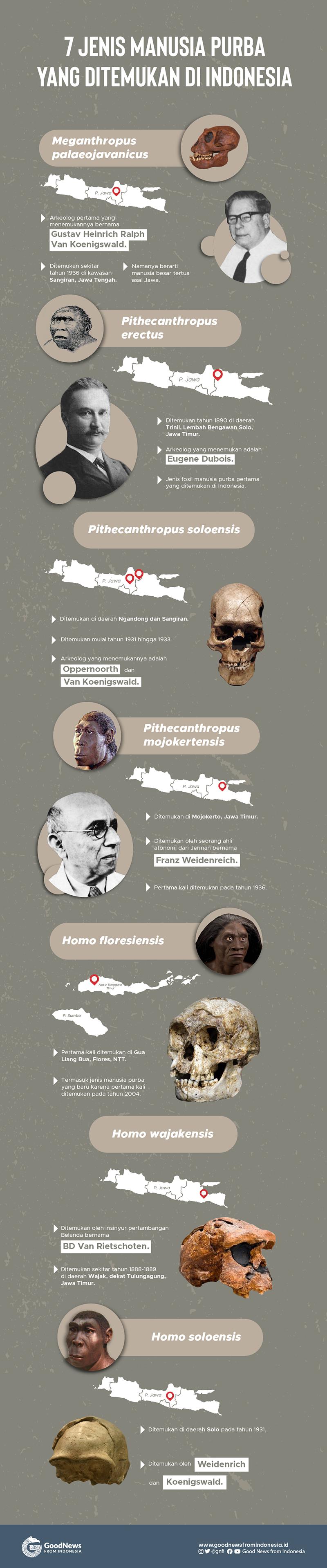 7 Manusia Purba yang Pernah Ditemukan di Indonesia
