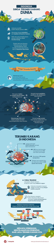 Indonesia Surga Terumbu Karang Dunia