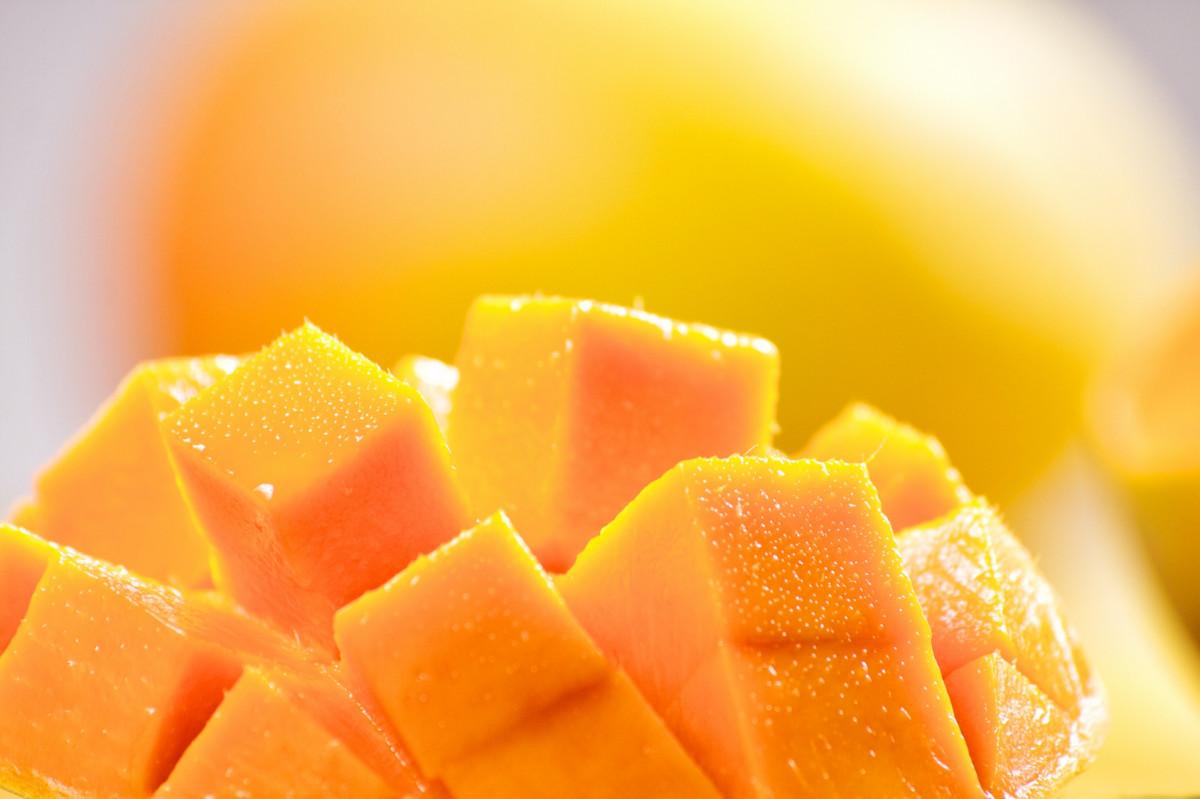 Mengenal Beberapa Jenis Mangga yang Ada di Indonesia