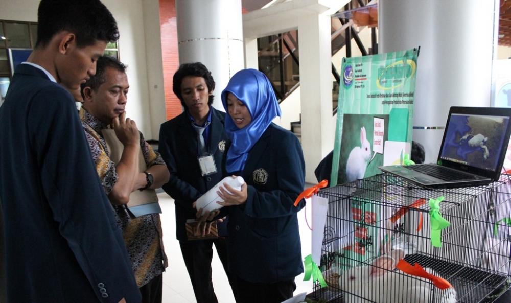 Mahasiswa UB berhasil Ciptakan Obat Diare Alternatif Untuk Kelinci