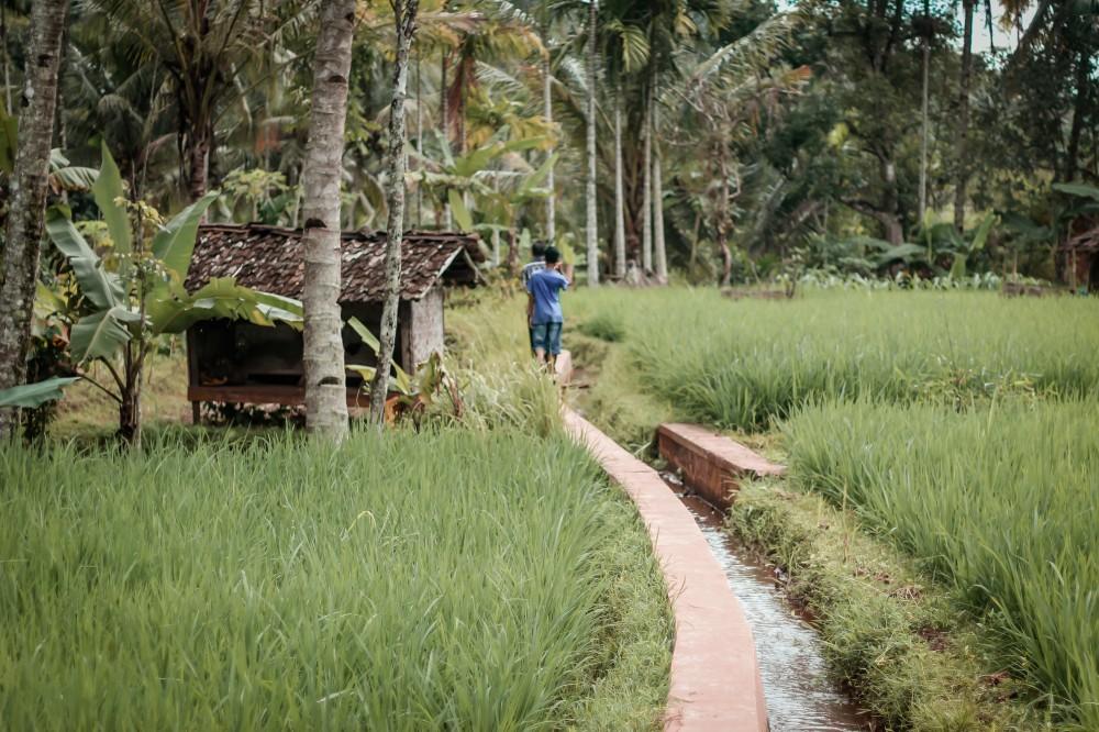 3 dari 5 Pulau Populer Dunia ada di Indonesia. Pulau Apa Saja?