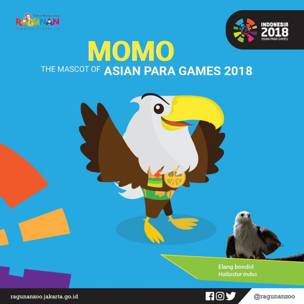 Kenalan Dengan Si Elang Bondol Maskot Asian Para Games 2018