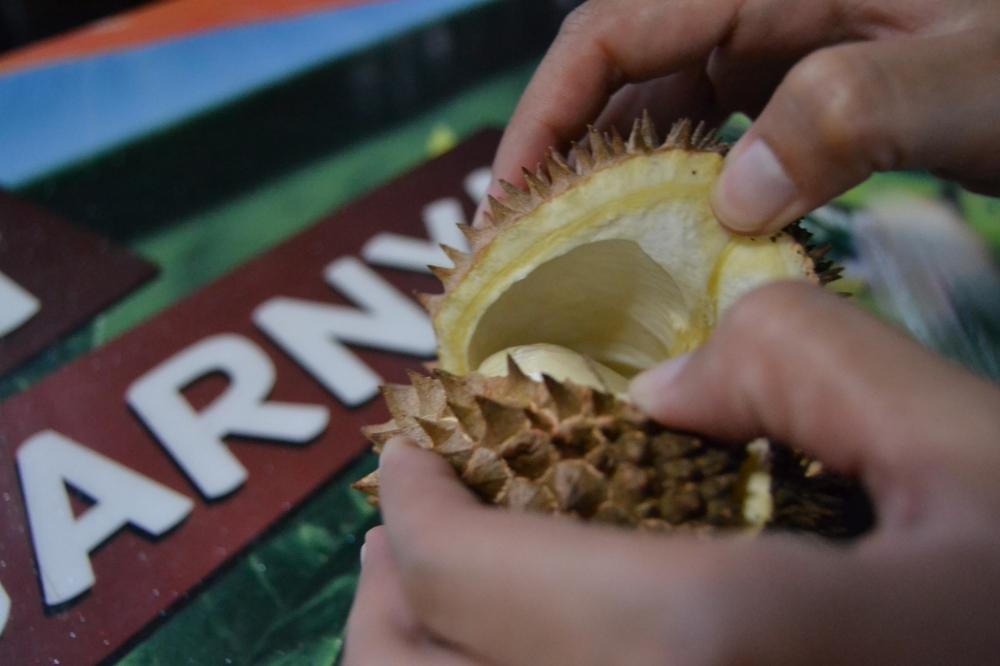 Everything in Trenggalek, Kisah Durian dan Inspirasi dari Wabup Termuda se-Indonesia