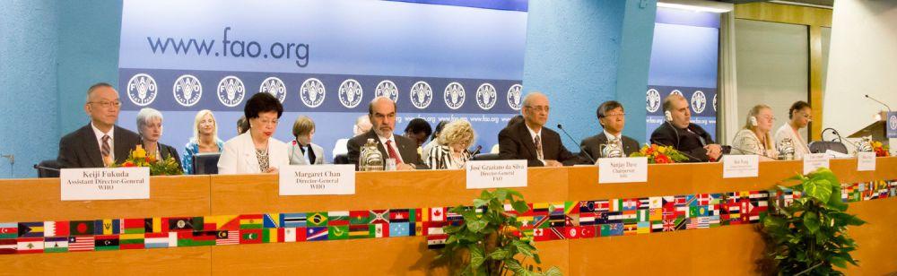 Terpilihnya Guru Besar Indonesia Menjadi Wakil Ketua Komisi Pangan Dunia