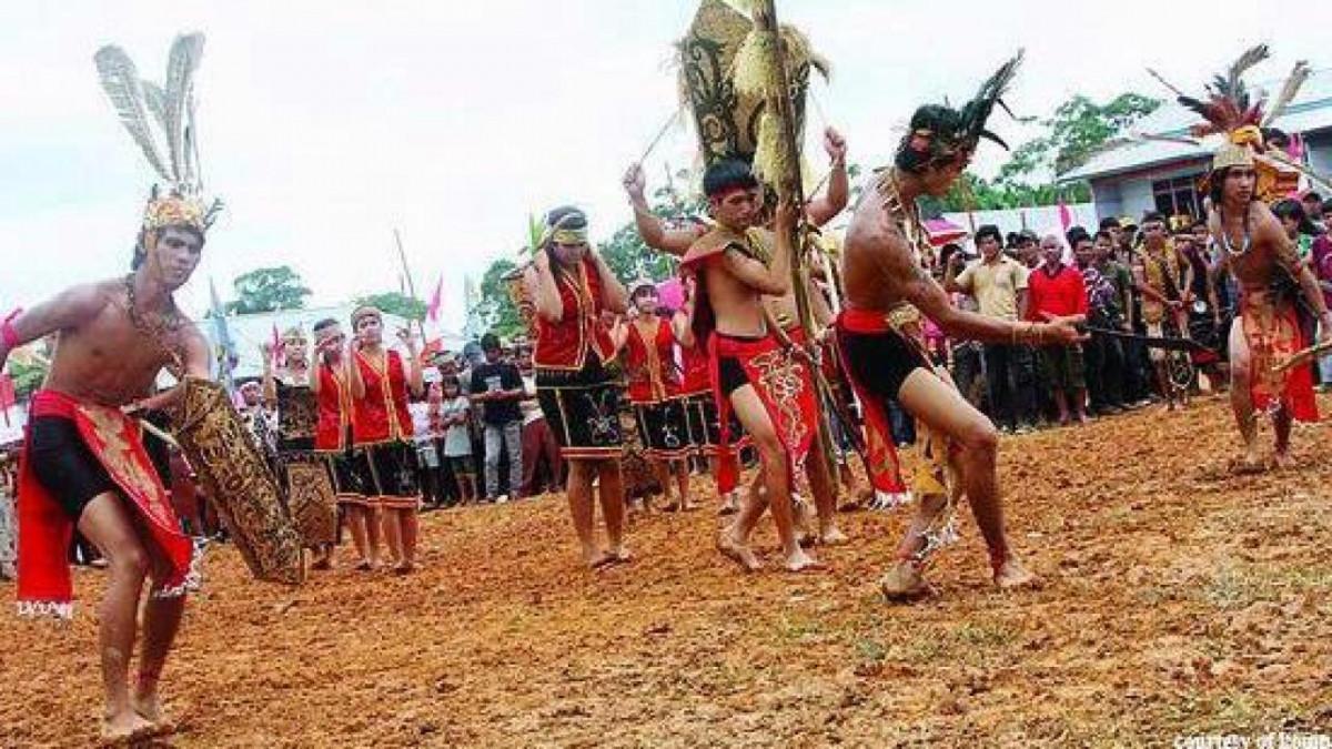 Ritual Naik Dango Bentuk Syukur Atas Hasil Panen Padi Suku Dayak Kanayatn