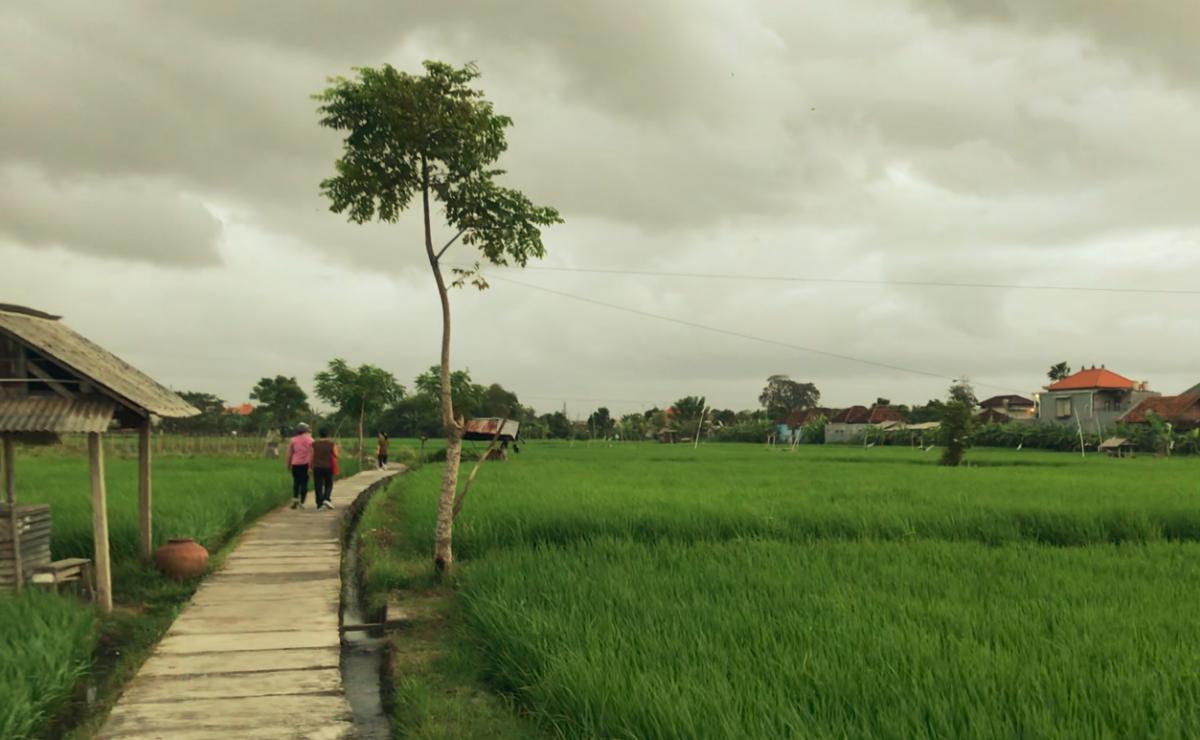 Wujud Nyata dari SDGs, Inilah 4 Desa Mandiri Energi di Indonesia