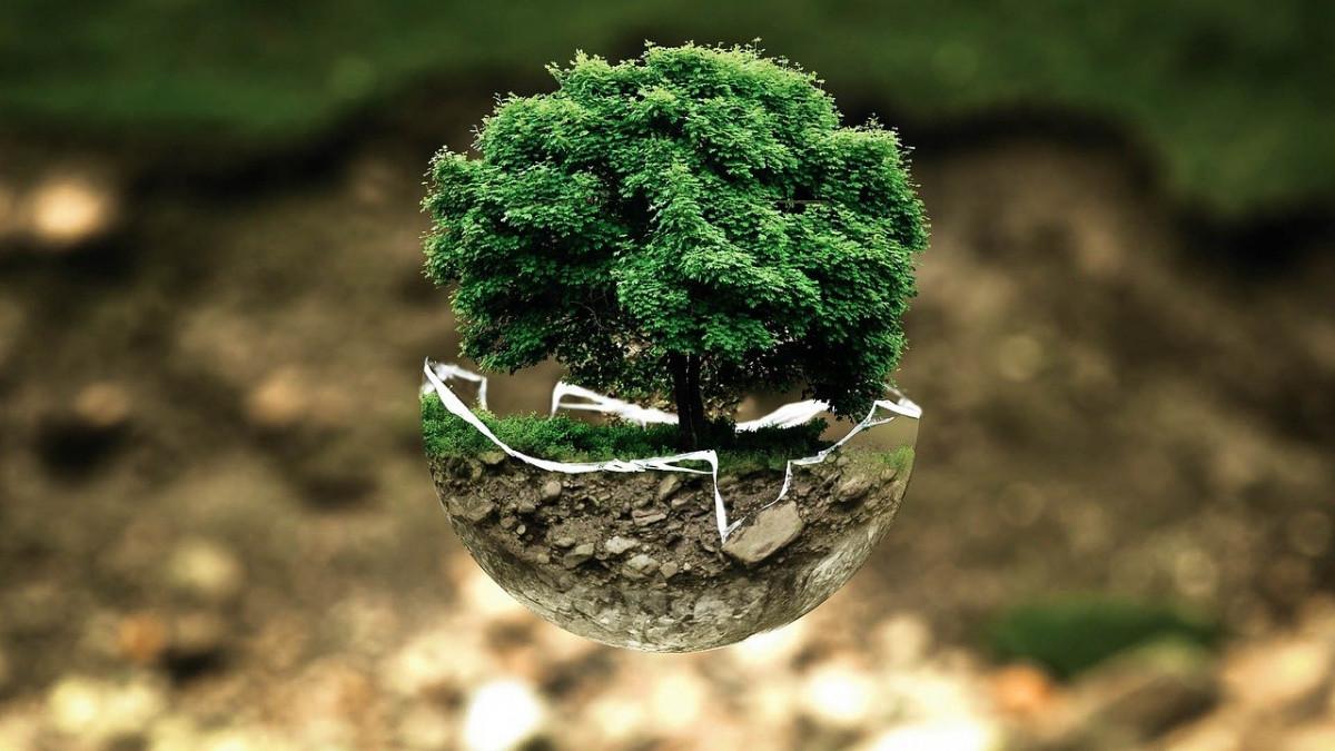 Melestarikan Lingkungan Hidup adalah Tugas Kita Semua Wahai Penghuni Bumi