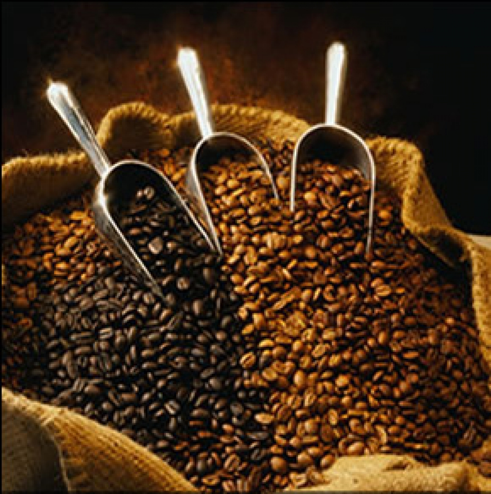 Fertility Coffee: A New Indonesian Cash Crop?