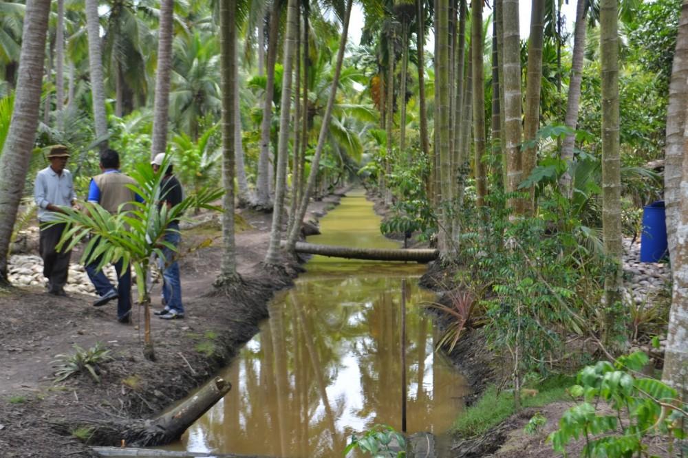 Infrastruktur di Kabupaten Indragiri Hilir