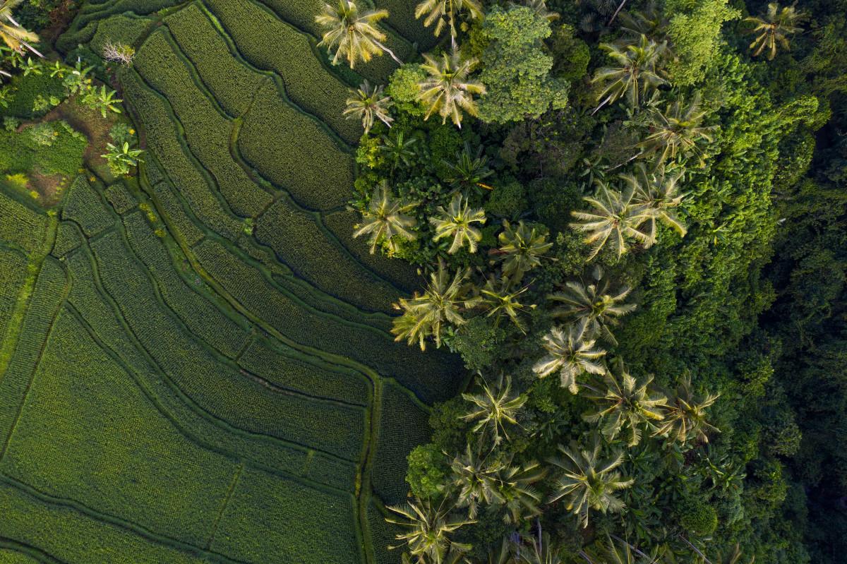 Inilah Kota di Indonesia yang Masuk 10 Besar Kota Terbaik di Dunia