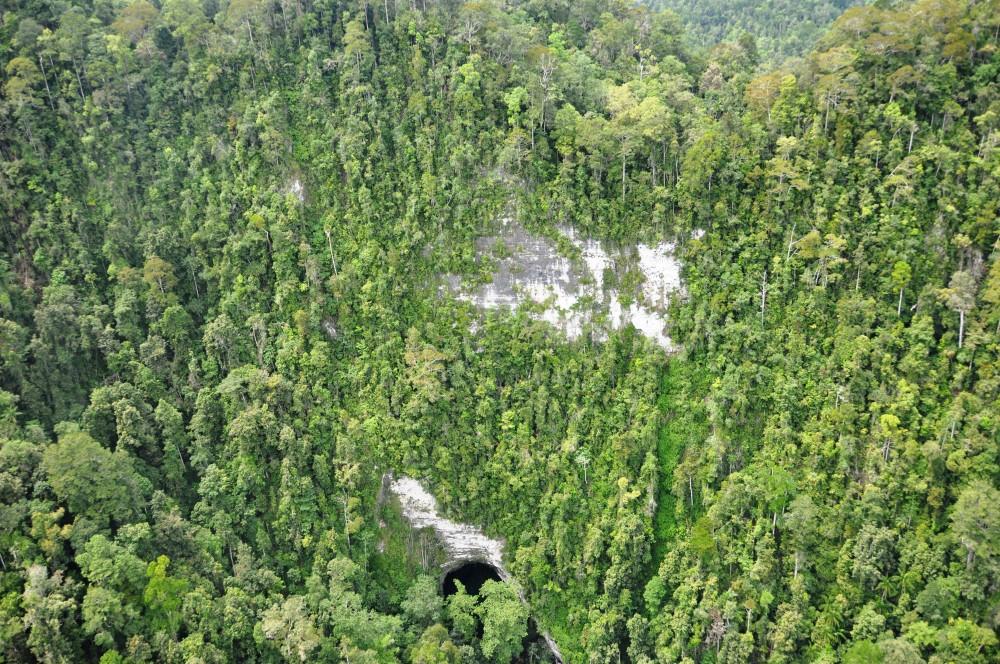 Kini Taman Nasional Ini Punya Suaka Paruh Bengkok