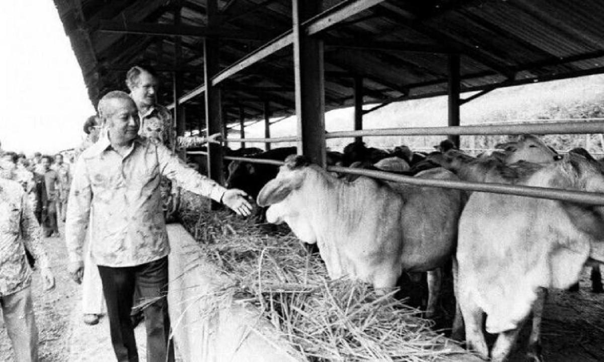 Sejarah Hari Ini (13 November 1978) - Peresmian Pusat Penelitian dan Pengembangan Ternak