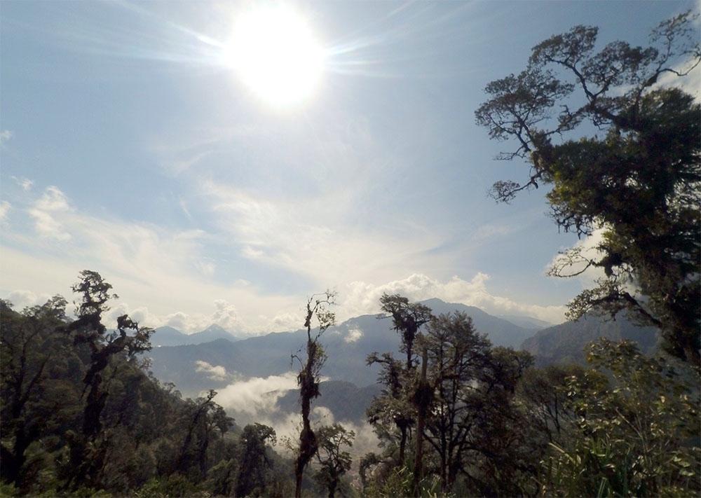 Hangat di Kedinginan Celah Pegunungan Jayawijaya