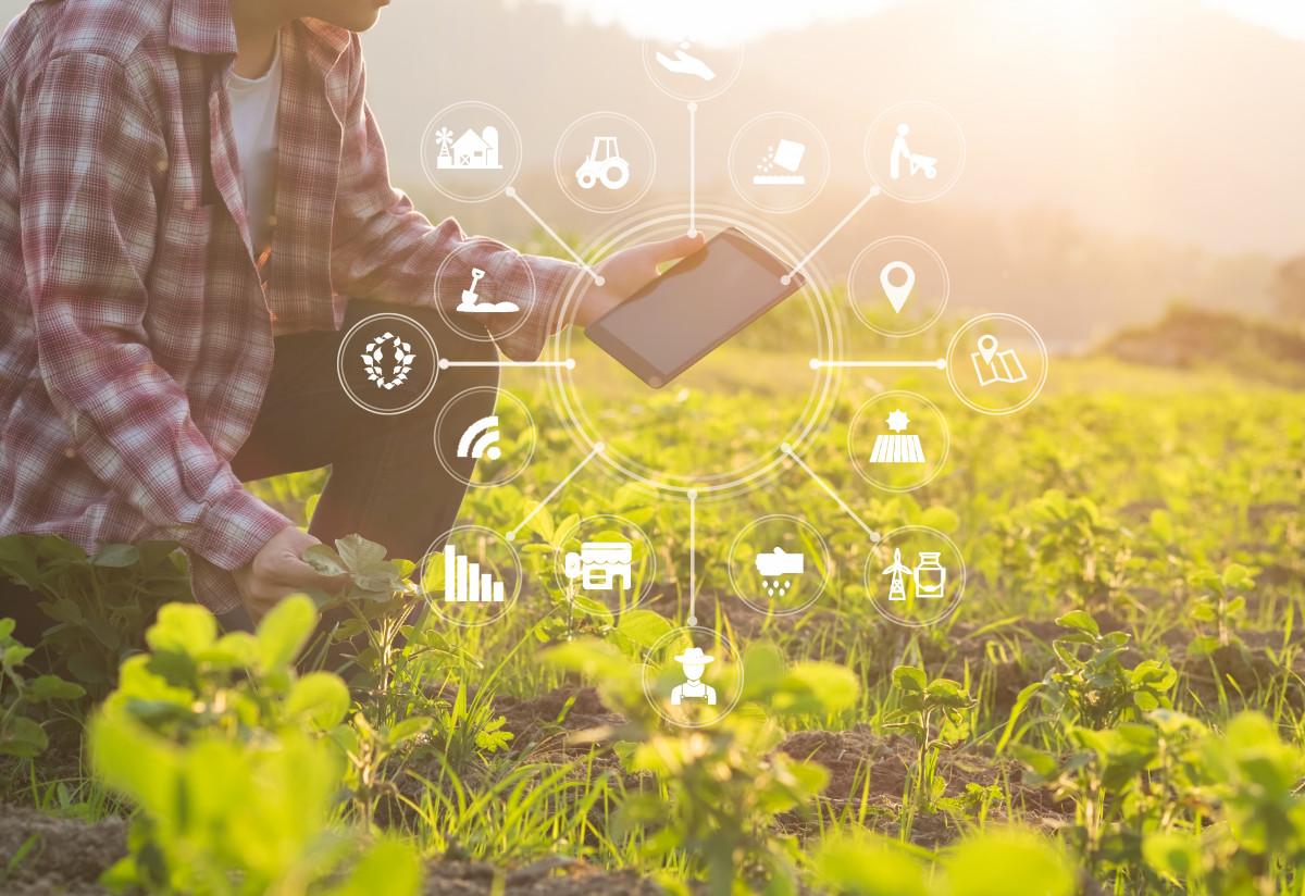 3 Perusahaan Indonesia yang Kembangkan Teknologi AIoT, Manfaatnya Terasa untuk Masyarakat