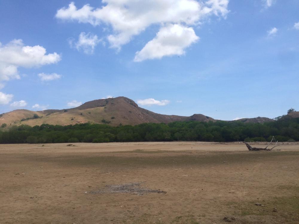 Pesona Keindahan Taman Nasional Komodo