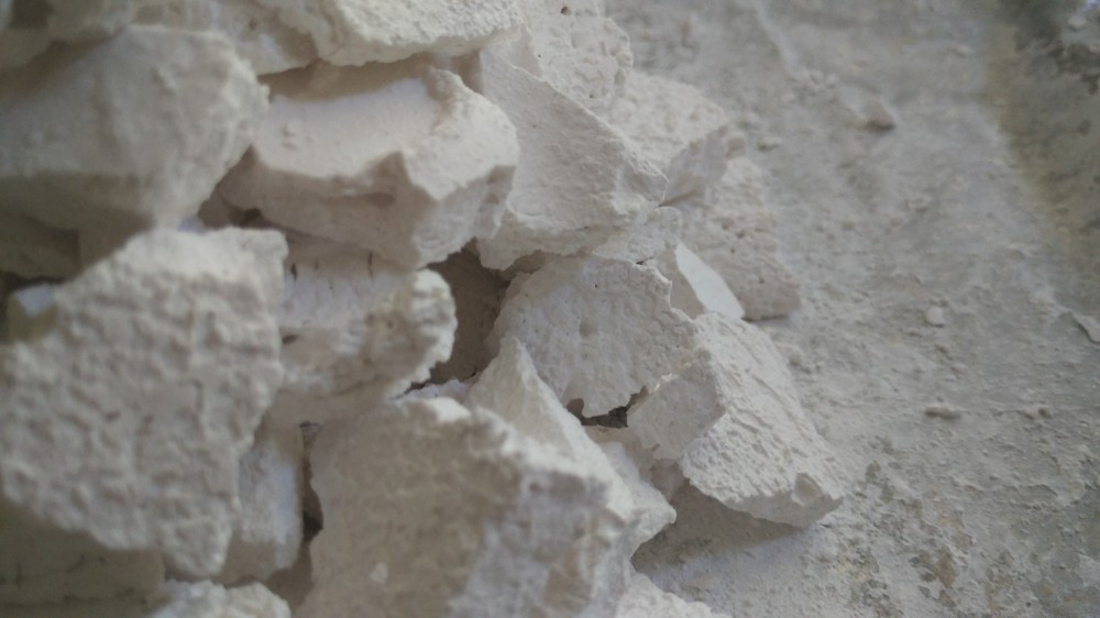Tulang Kambing untuk Obati Patah Tulang Manusia