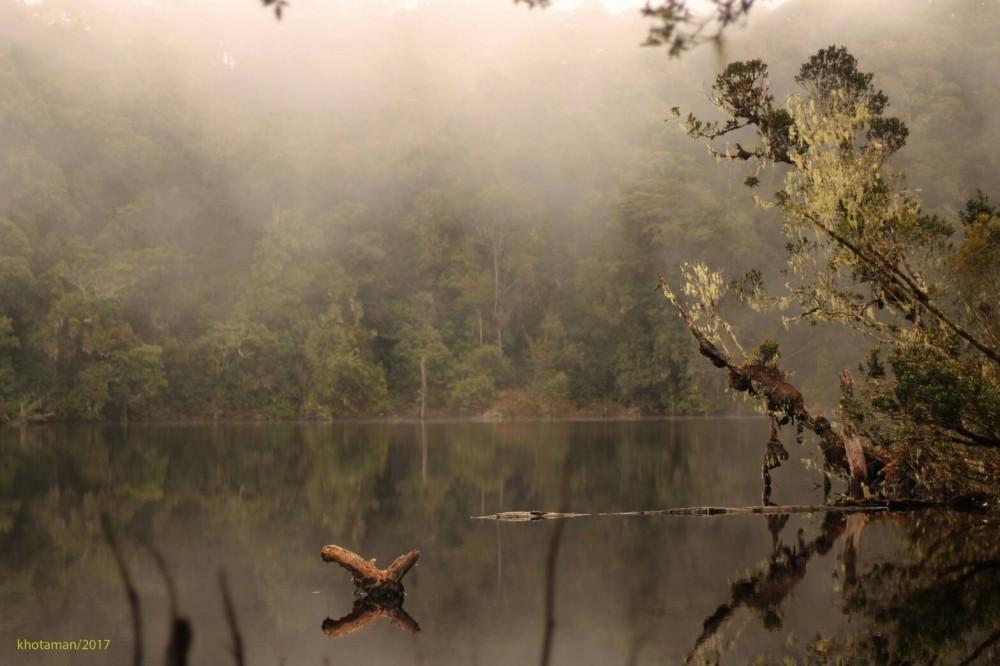 Menjalankan Amanat Leluhur, Suku Basemah Jaga Hutan Adat Sumber Mata Air