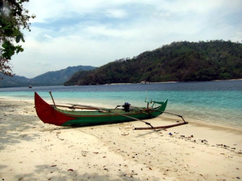Indonesia optimistic to surpass one billion tree target