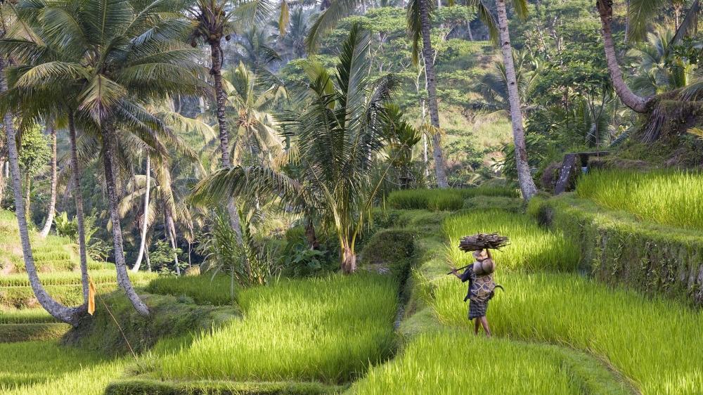 Indonesia yang merdeka dan berdaulat digital. Mari wujudkan