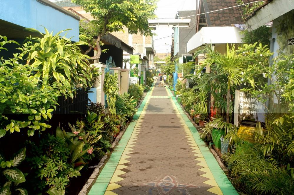 Penghijauan Kampung dan Kebiasaan Berkebun di Jakarta