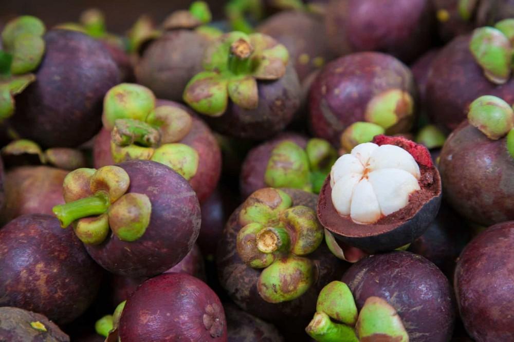 Manggis dan Buah-buahan Indonesia lainnya akan di Ekspor ke Argentina