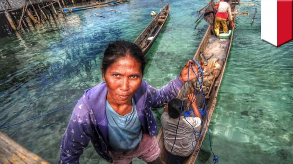 Suku Asli Indonesia Sang Manusia Ikan