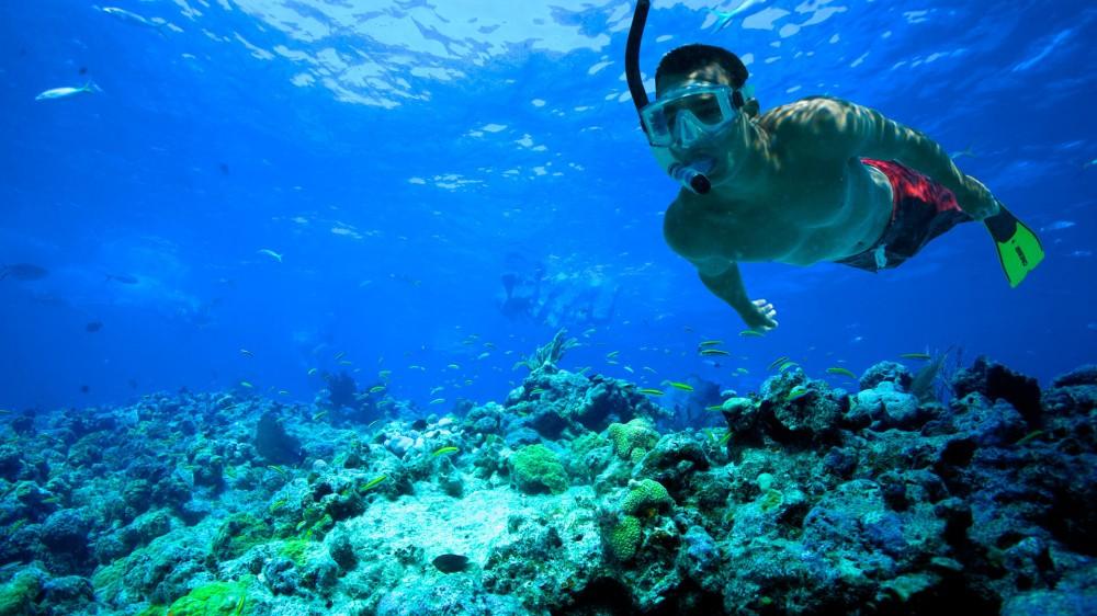 Raja Ampat, Pantai Terindah di Indonesia untuk Snorkeling