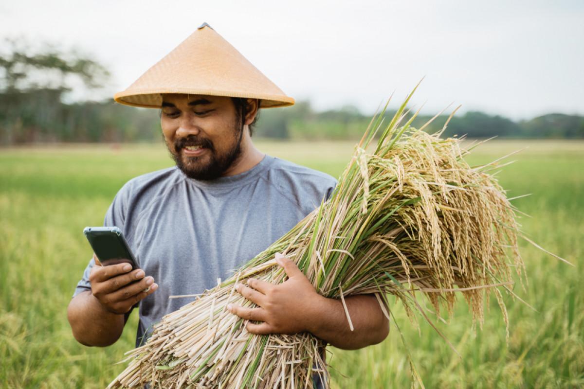 TaniHub dan Deretan Startup Pertanian Indonesia yang Berhasil Raih Investasi Miliaran