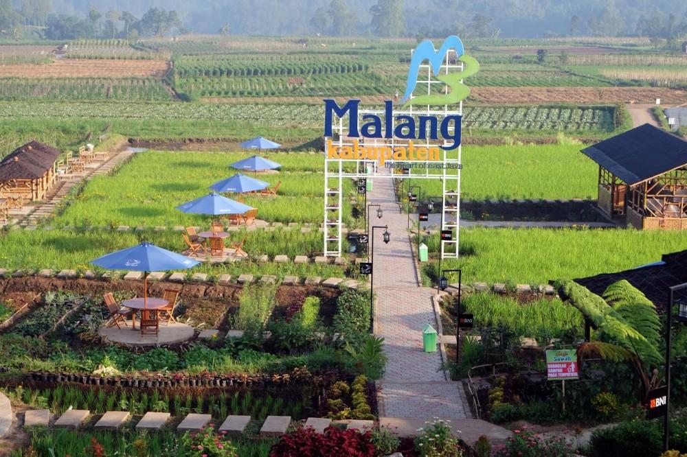 Liburan Edukatif Dan Berteman Alam Di Desa Pujon Kidul Good News From Indonesia