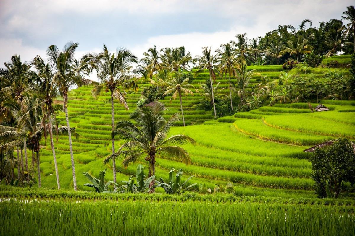 Desa Tete Batu Lombok Wakili Indonesia dalam Kompetisi Internasional