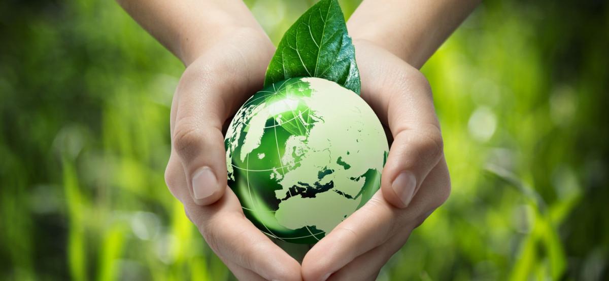 Yuk, Terapkan Gaya Hidup Go Green dengan 5 Cara Ini